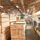 drvna_industrija11062015-620x400